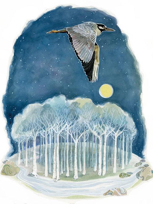 Night Heron (archival print)