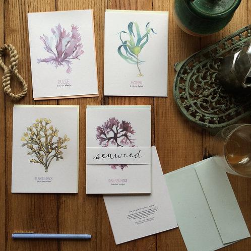 Seaweed /// greeting card set