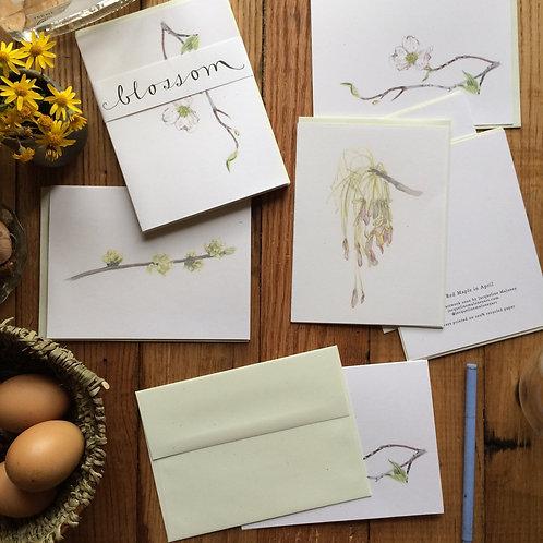 Blossom /// greeting card set