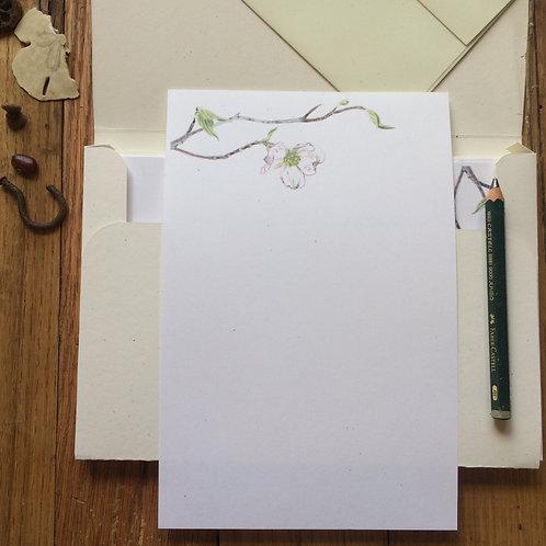 Dogwood letter sheets