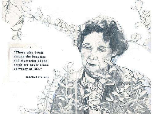 Rachel Carson card
