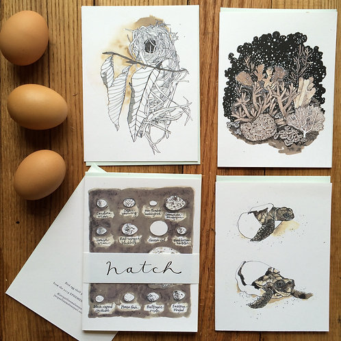 Hatch /// greeting card set