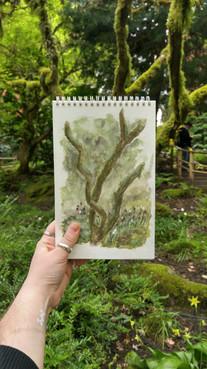 japanese garden, 2017