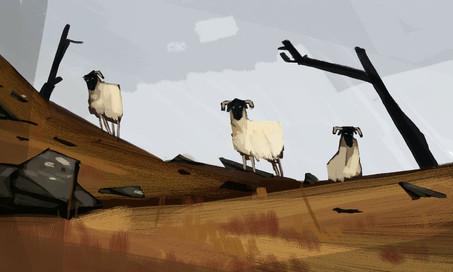 Northern Sheepfolk