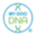 mdd_logo_color_1200.png