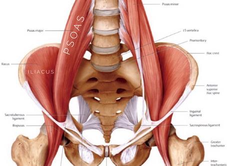 Tight hip flexor?