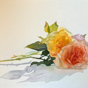 Reclining Roses