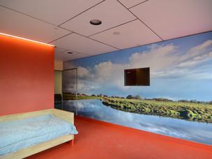 Dolf's Room