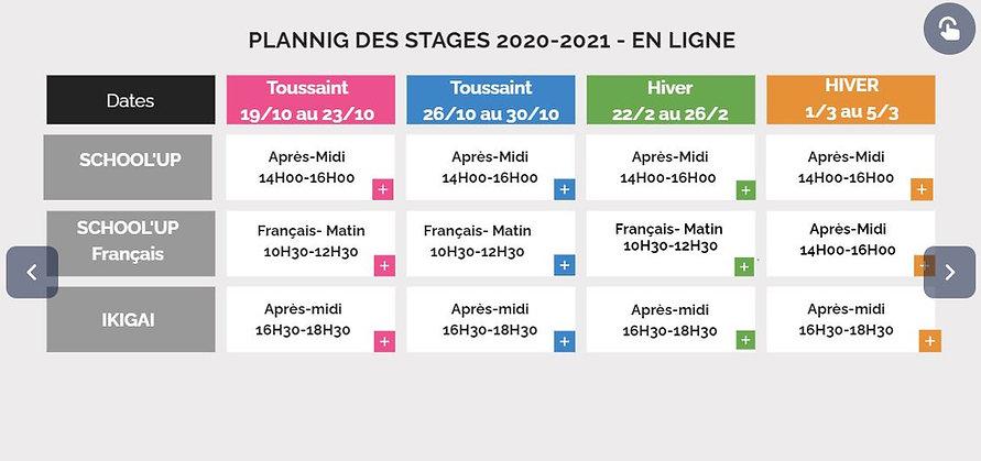 planning online 2020_2021.JPG