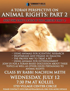 Animal Rights Part 2