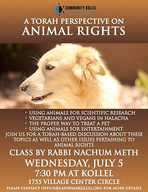 Animal Rights Part 1