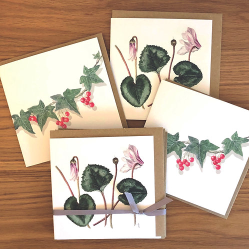 Cyclamen and Ivy Card Pack