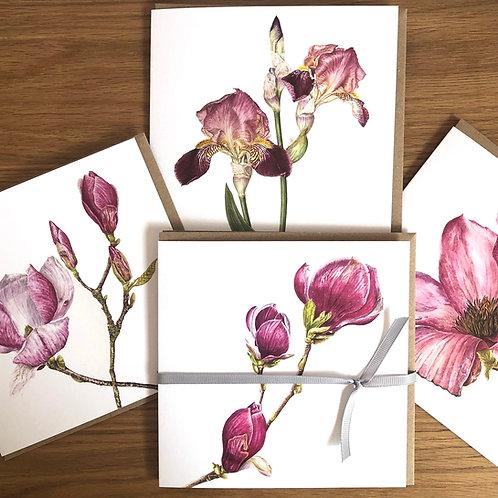 Iris and Magnolia Card Pack