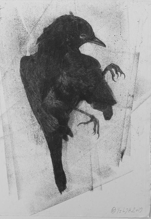 blackbird III web.JPG