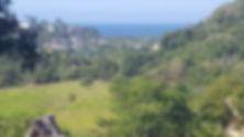 Ocean view1.jpg