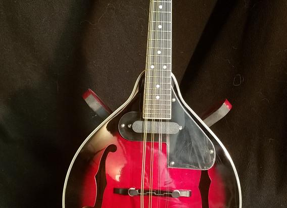 GW Mandolin (25).jpg