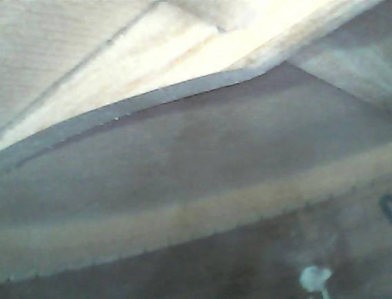 aria bracing 2.jpg
