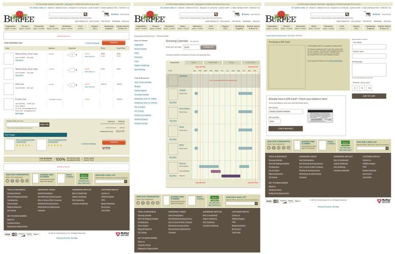 Burpee Web Page Wireframes