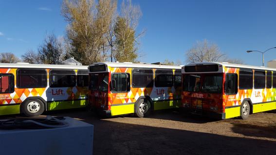 Winter Park Buses