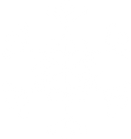 Blanc flocon de neige 1