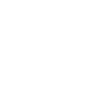 White Snowflake 1