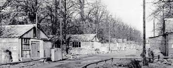 Bushy Park's link to D-Day