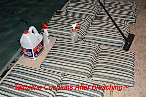 Cushions After.jpg