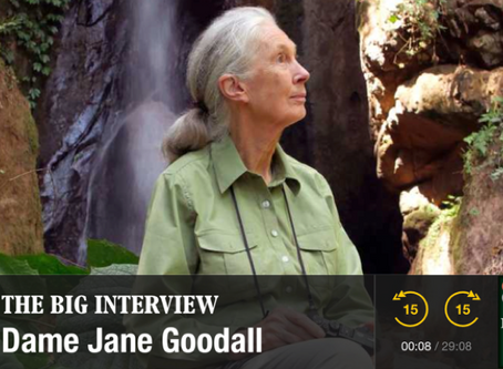 Dr. Jane Goodall Speaks to Monocle 24
