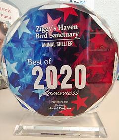 2020 Award.jpg