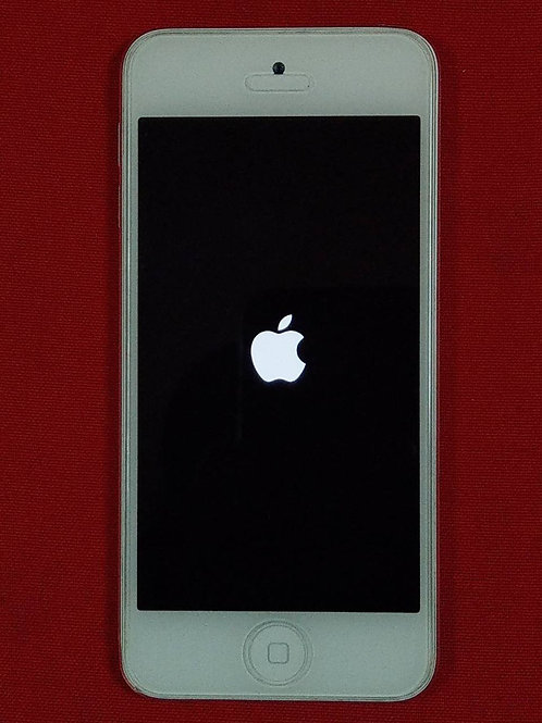 Apple iPod touch 5G 32Gb White Silver MD720RU/A