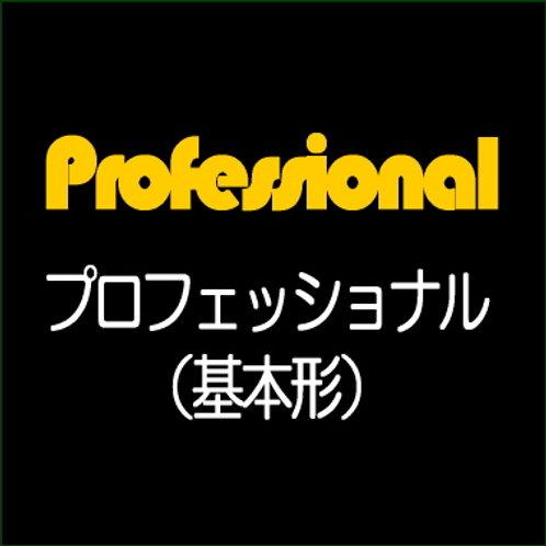 Professional 高多機能