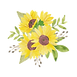 sunflower-4.png