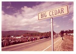Photo 01 - Big Cedar