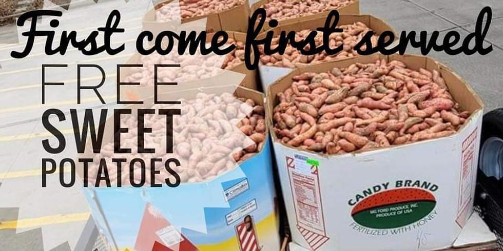 Free sweet potatoes to the PUBLIC & ETGC Members