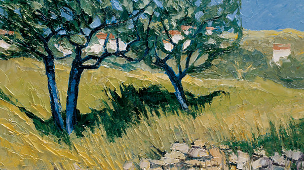 Olive Trees at Menerbes, Provence Artist: Alan Cotton