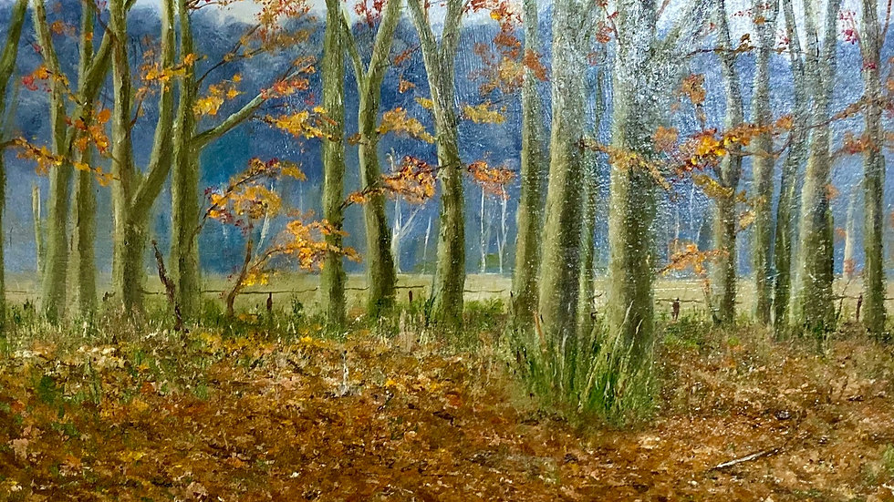 THE MEADOW Original Oil Artist: Monty