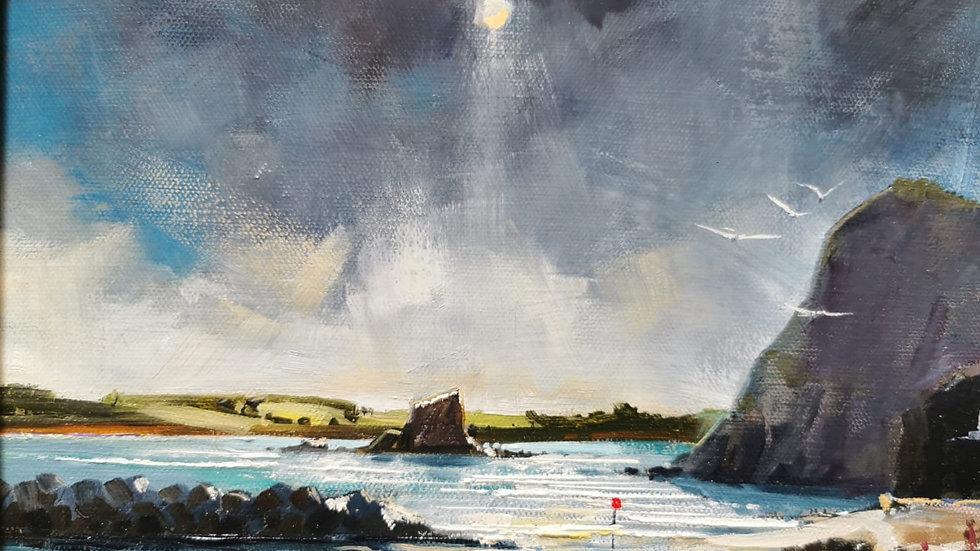 PEAK HILL TOWARDS LADRUM BAY Original Oil Artist Barry Seaforth