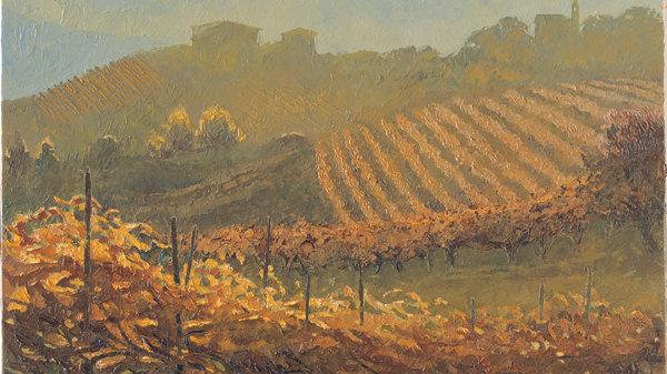 Rows of Vines at Montelupo Albese, Piemonte Artist: Alan Cotton