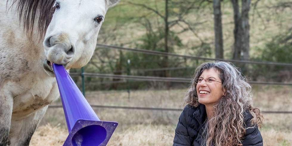 Equine Behavior and Emotions
