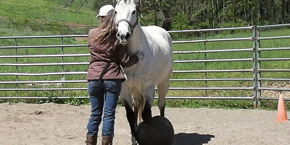 Horse Lover's Gathering and Volunteer Orientation
