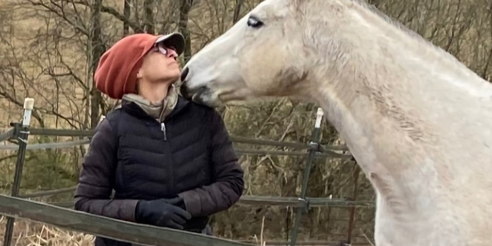 Horse Training with a Heart