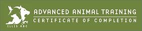 AAT banner.jpg