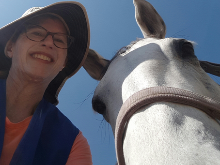 From Traditional to Welfare-Centered...How this Horse Trainer Sees Life with Horses