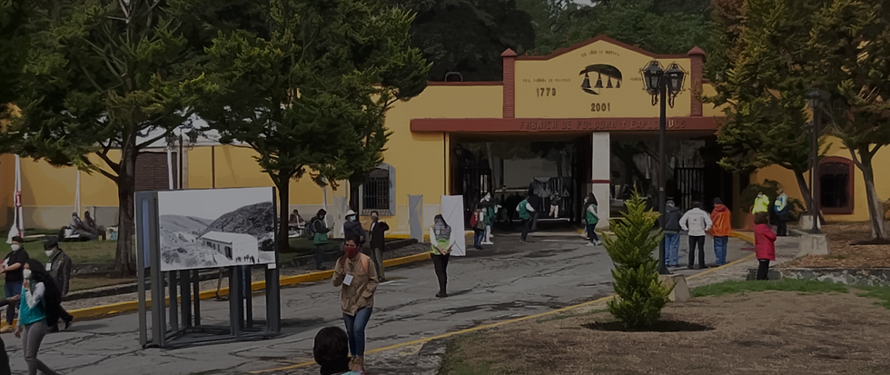 La cuarta de Chapultepec, la Bienal radiofónica… y en las culturales.Foto1.png