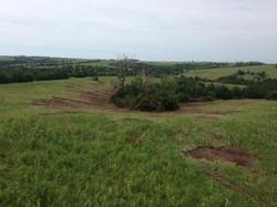 Pasture Clearing Milford Nebraska