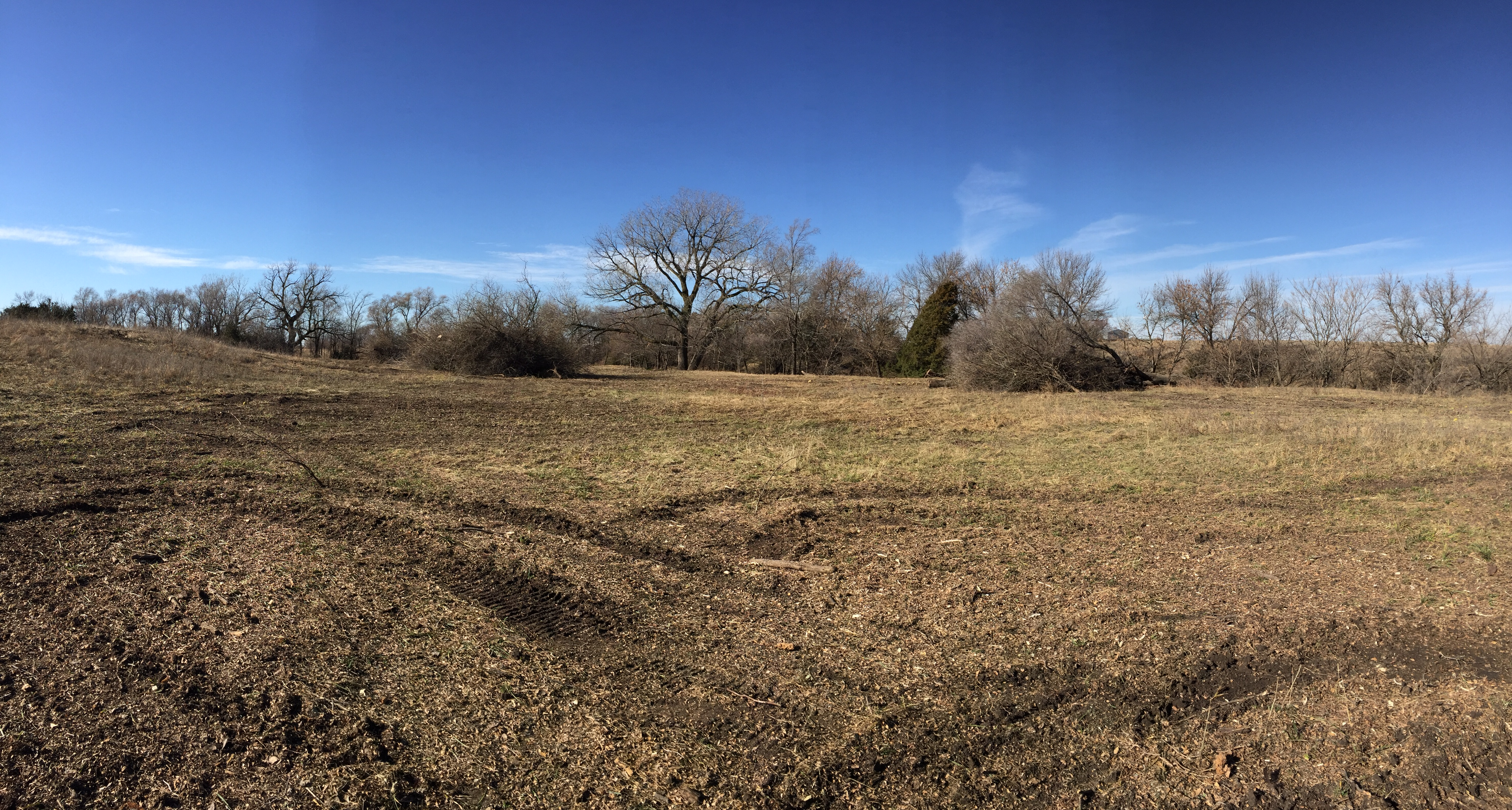 Pasture Clearing Lincoln Nebraska