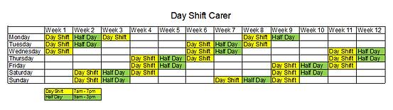 Day Shift Carer Rota 2021.png