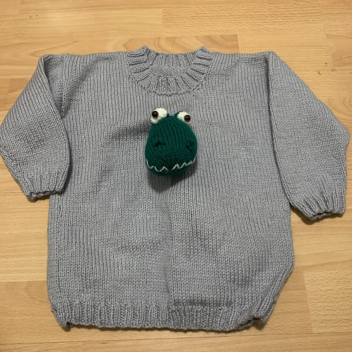 Home Made Dino Jumper