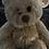 Thumbnail: PEG Fed Furry Brown Bear
