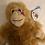 Thumbnail: NG/NJ Monkey - Stuff Your Own